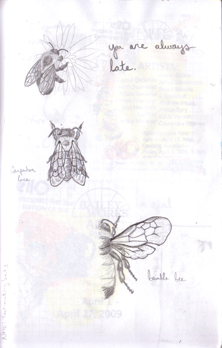 pg. 51