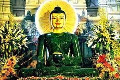Extraordinary Phenomenon (Những Điều Chưa Biết Về Tượng Phật Ngọc)