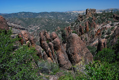 Pinnacles 2009 059