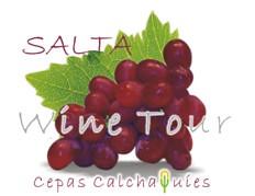 hostnews.com.ar_3122_2152009_winetour[1]