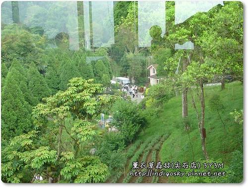 新竹薰衣草森林(尖石)-093