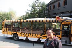 IMG_4553 (youta) Tags: park family wild vacation white zoo tour bears tiger korea korean lions theme liger gan everland
