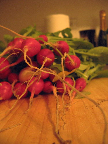 radishes from my garden