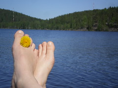 FUTAB on a summer day (ralli sankari) Tags: summer finland futab feetuptakeabreak