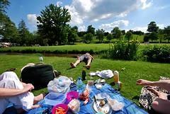 English Summer (richard creagh) Tags: uk summer england nikon europe sigma wideangle 1020 ultrawide abinger villagegreen sigma1020 abingerhammer