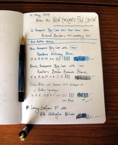 Noodler's V-Mail inks + Pelikan