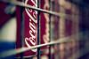 Coke-h (Chee Seong) Tags: netherlands canon dof bokeh coke can keukenhof lisse canon2470mmf28 explore10 gardenofeurope 5dm2 explorefrontpagethanks