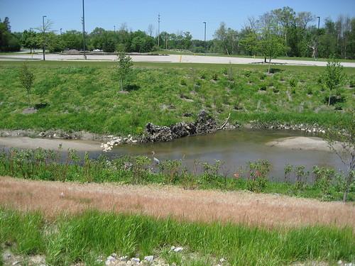 IMG_52992009, May  Applewood's Gilkey Creek Restoration