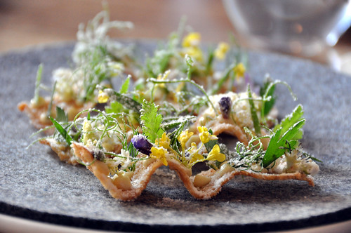 Restaurant Noma: Toast med pighvarrogn, by cyclonebill, on Flickr