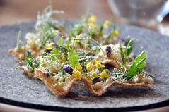 Toast med pighvarrogn, urter og eddikestøv