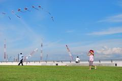 DSC_0269 (matzhuang) Tags: sun grass marinabarrage