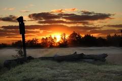 middleboro,ma (jarhead262) Tags: sunrise nikon newengland topaz potofgold d40 theunforgettablepictures astoundingimage tup2 middleboroma