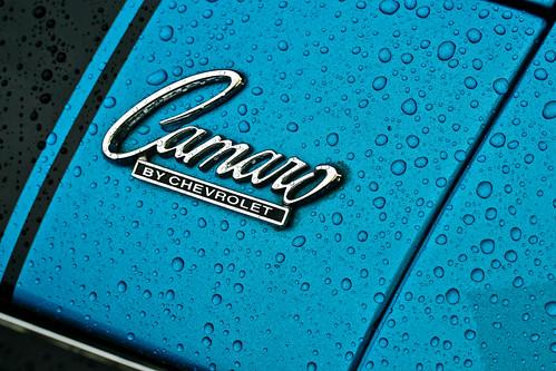 chevy camaro logo. Chevy Camaro logo in rain