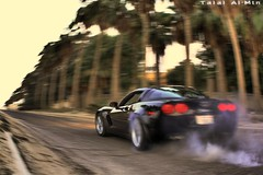 Corvette Z06 burnout (Talal Al-Mtn) Tags: 2005 street black tree english canon out eos rebel hp power shot free twin gear tire turbo kuwait manual burnout rims 2008 corvette plam c6 2007 supercharged xsi q8 z06 zr1 kwt hourse corvettec6 corvettezo6 450d canon450d  505hp inkuwait corvettec6zo6 talalalmtn  bytalalalmtn