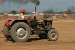 Old is Gold (Ajit Pal Singh) Tags: old two horses india tractor game history sports sport festival youth rural speed gold photo dance high construction war colorful village bullock action folk bare events traditional religion culture mini games event riding winner vehicle warrior effort tug olympics sikh cart agriculture punjab popular 2009 schedule kila sponsor bravery agricultural daredevil stunt bhangra deliver courage gallop daring gallary implements ludhiana compete galloping quila footed grewal kabbadi raipur giddha kilaraipur mywinners tractive qilaraipur