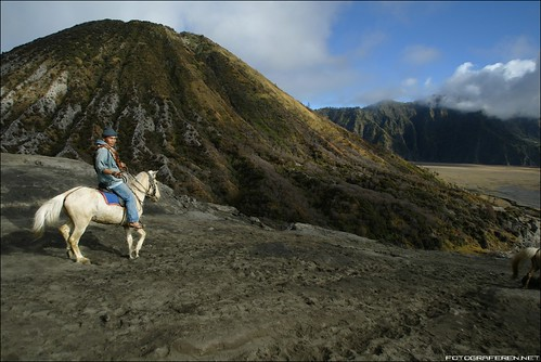 Up and down to the Bromo crater is easiest by horse.
