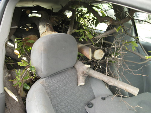 2000 Ford Focus hatchback full of logs