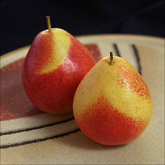 Perfect Pair of Pears (NaPix -- (Time out)) Tags: stilllife food macro nature fruits ceramic japanese yummy perfect pears pair plate explore strobe iatethis explored explorefrontpage strobist justwaitingforyou napix cccunanimous perfectpairofpears dontmixapplesandpears japaneseceramicplate mikasamadeinjapan