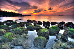 Extreme Makeover (J.^2) Tags: sunset sea cloud water rock canon moss singapore purple cast punggol j2 hdr gdn jiangjiang cokin 3xp 400d jsquare