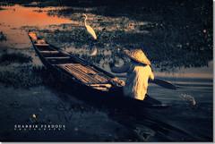 Eastern Sunrise : Life is Like a Boat (Shabbir Ferdous) Tags: nature landscape boat photographer shot sylhet bangladesh bangladeshi canoneos5d ef70200mmf28lisusm shabbirferdous wwwshabbirferdouscom shabbirferdouscom