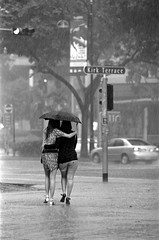 'Into the flood again' (sixbyfourfive) Tags: girls blackandwhite rain blackwhite nikon singapore trix highcontrast f100 nikonf100 ilford cathay kirk downpour ddx ilfordddx v700 sigma7020028 sigma70210 epsonv700 sixbyfourfive sigma70200hsmiidgex28 sigmahsmii70200dgex28d sigmaapo70200dexdghsmii sigmaapo70200hsmiidgex sigmaapo70200hsmii28ddgex kirkterrace brasbassah