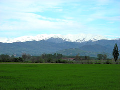 View to the mountains (Pinerolo, Piemonte, Italy) Photo