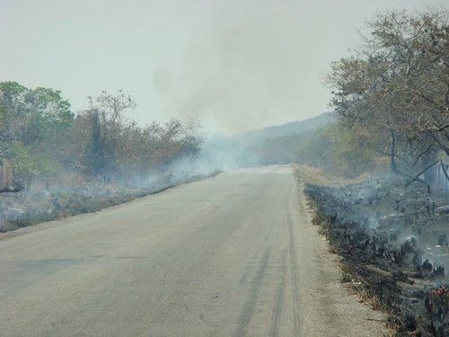 Forest fire in Oaxaca, Mexico.