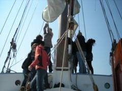 DSCN1550 (evabouman) Tags: de op avanti varen