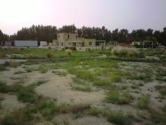 صورة0035 (lateefkuwait) Tags: في تاريخ المزرعة 452009