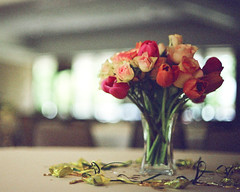 Happy Mothers Day. (diyosa) Tags: flowers roses film iso200 tulips naturallight centerpiece canonae1 pushedto400