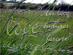 Christian Backgrounds Wallpaper - His Love Endures Forever (crossmap backgrounds) Tags: desktop wallpaper green love grass typography worship christian backgrounds forever typo computerscreen powerpoint endure powerpointbackgrounds crossmap worshipbackgrounds freechristianimages