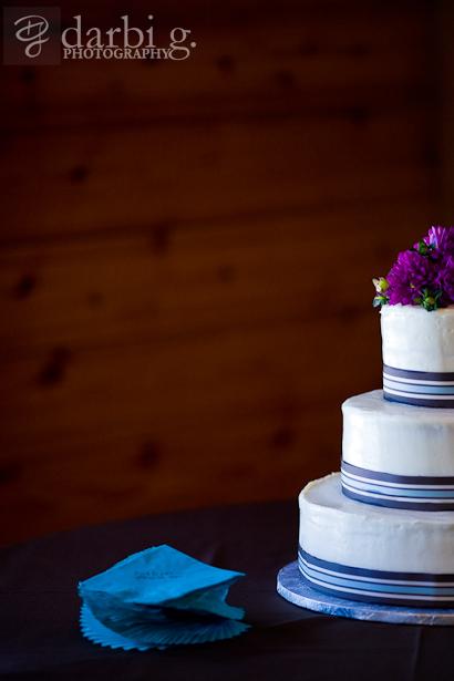 Darbi G Photography-Allison-Zack-wedding-_MG_5483