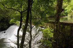 View from the Shadows (David Hopkins Photography) Tags: trees tree water leaves wall reflections waterfall nc rocks whitewater dam northcarolina pisgahnationalforest hendersoncounty northmillsriver hendersonvillereservoir davidhopkinsphotography ncpedia