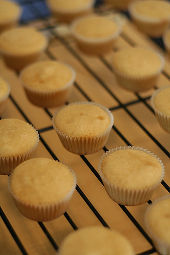 peanut butter cupcakes cooling