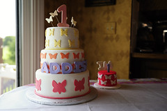 07032009 - Addison's First Birthday Cake