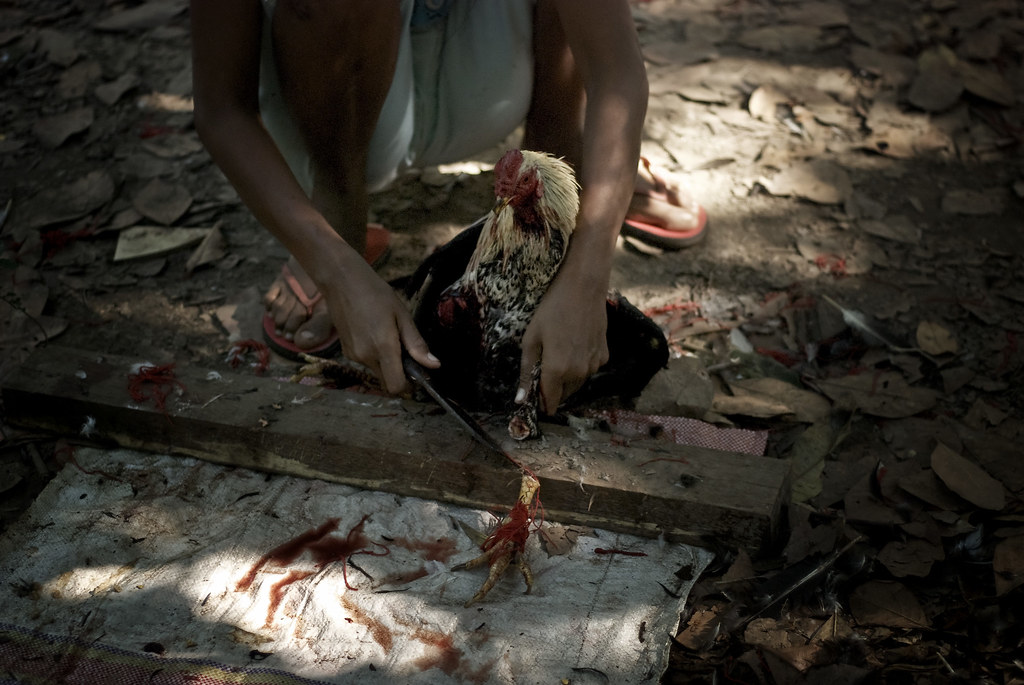 Useful Bali nude beach girls apologise