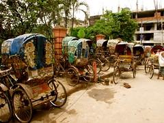 gathering of rickshaws (topbanana) Tags: road bicycle asia wheels dhaka rickshaw bumps bangladesh bangla decorated southasia olddhaka rickshawart americanphotographer bumpyroads