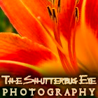 The Shutterbug Eye