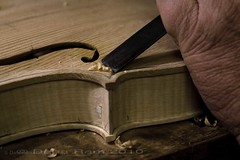 violin maker 2.jpg (danaramphotography) Tags: wood italy florence violin cello tuscany handcrafted instruments viola luthiers liutaio vettorifamily violinmakers artegianale