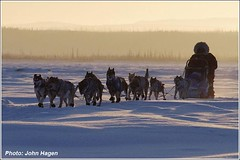 Yukon-Quest-Sab-Schnuelle