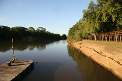 Morning on Rio Miranda (chris.bryant) Tags: wood morning brazil sky sun sol southamerica water rio brasil reflections river jetty calm serenity bushes pantanal sudamerica amricadosul riomiranda flickraward