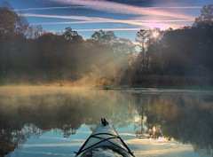 heading toward the sunrise (Marc Crumpler (Ilikethenight)) Tags: morning trees usa water fog sunrise canon reflections landscape kayak lakes southcarolina sunrays goosecreek tamron1750 40d anawesomeshot amazingshots canon40d