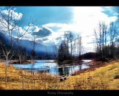 the wetlands (bluejay 2006) Tags: blue trees lake canada mountains nature water scenic bluesky monday sunnyday beautifulbritishcolumbia nikond40 skycloudssun chilliwackbc betterthangood topphotography damniwishidtakenthat bluejay2006