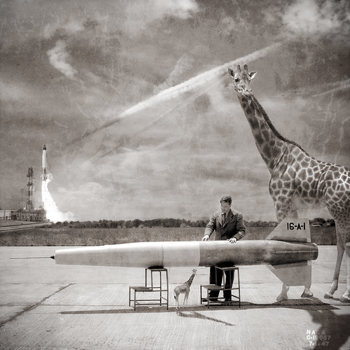 Rockets for Giraffes