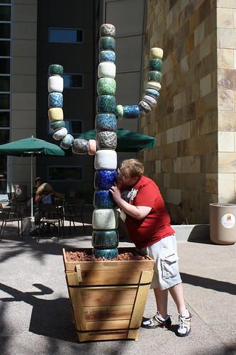 licking the ceramic cactus