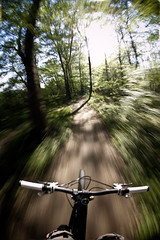 through the woods (moophisto) Tags: santacruz green nature bike bicycle forest woods ride mountainbike fisheye tokina 1017 heckler 5dmarkii