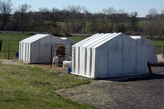 Super calf hutches