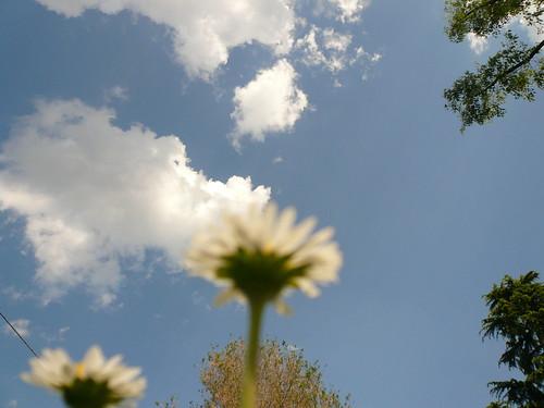 Risultati immagini per immagini gif nuvole e nuvolette