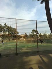 茅ヶ崎市民テニス大会