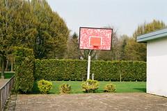 School basketball court (Wanderungen) Tags: school trees red white green film field basketball wall contrast nikon hedge limburg weert